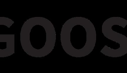 Goose VPN Review 2020
